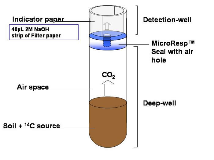 Schematic Diagram of Radioactive Method